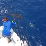 Quepos Fishing Report July 9th 2018