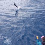Quepos Costa Rica, August still hot for Sport fishing