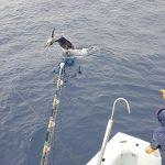 Costa Rica , fishing on board the Big eye II.