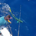 Quepos Costa Rica, Marina pez vela