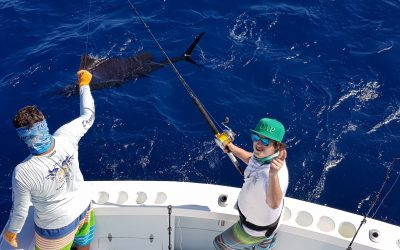 Dec 28 – The Sailfish are back in Quepos