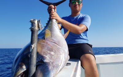There's some BIG Tuna around…