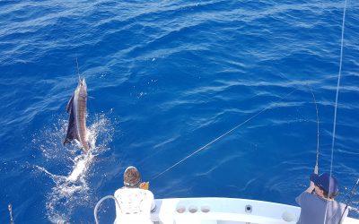 Costa Rica Fly Fishing with Big Eye 2 Charters