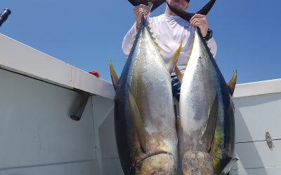 Fishing for Yellowfin Tuna in Quepos in March