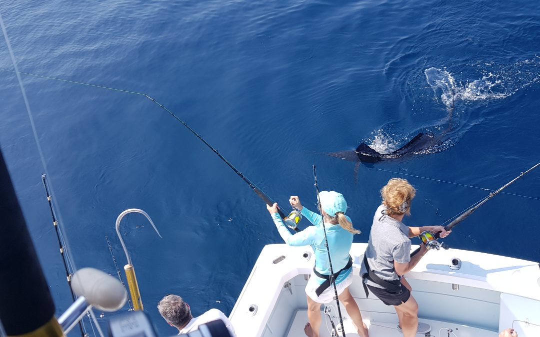April Tuna & Sailfish Fishing in Quepos