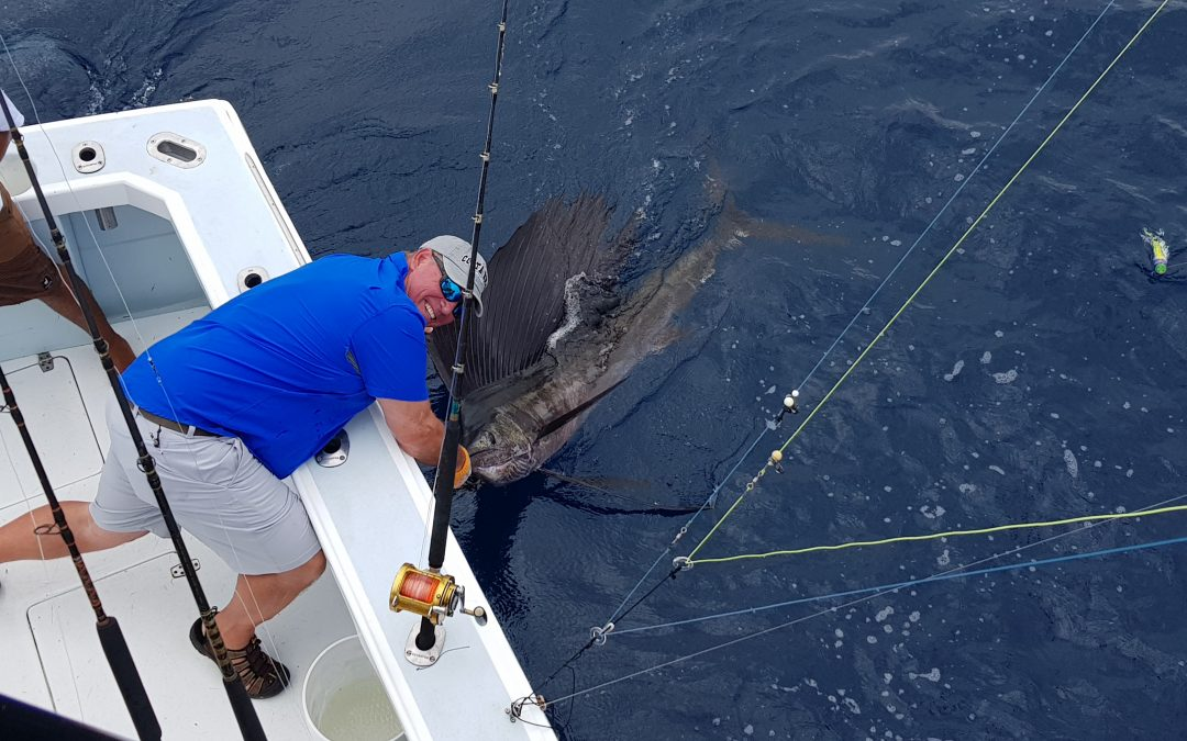 July 24 10 for 16 sailfish Released Sportfishing Costa Rica