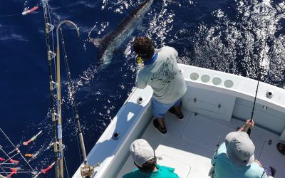 March 2, 2020 – Offshore Fishing Costa Rica
