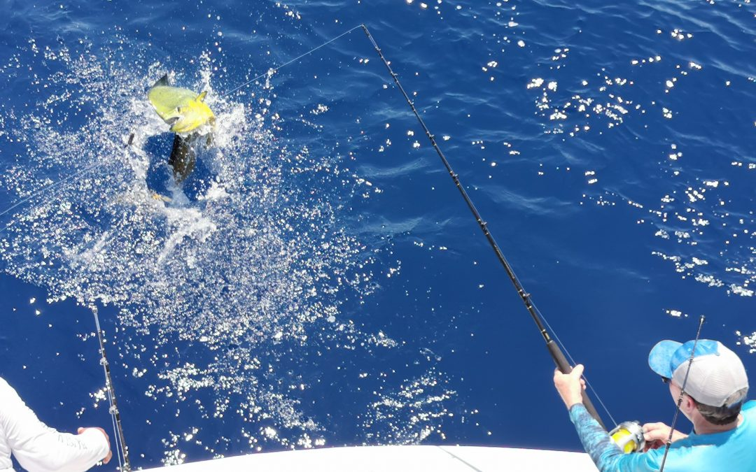 March 16, 2020 – 4 sailfish Quepos Costa Rica