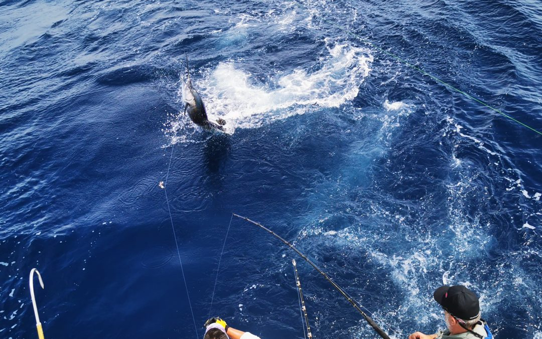 Costa Rica Marlin Fishing with Big Eye 2 – June 10, 2020
