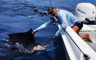 Pelagic Fly Fishing with Big Eye 2  – June 12, 2020