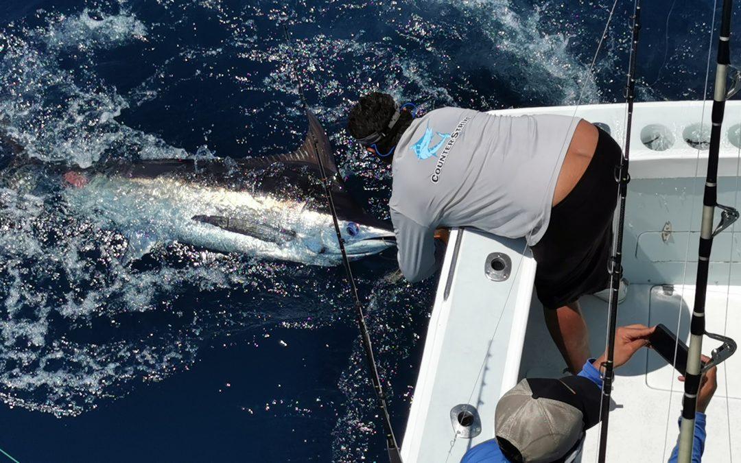 Quepos, Costa Rica Fishing Report Feb 9, 2021
